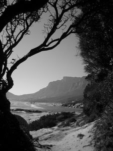 Free View Of Table Mountain Stock Images - 2644844