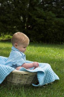 Free Basket Baby Stock Image - 2646211