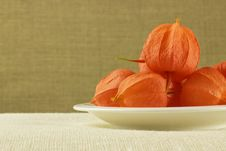 Free Physalis On Plate Stock Images - 26408734