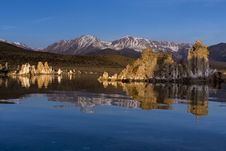 Tuffas At Lake Mono Royalty Free Stock Photo
