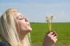 Free Beautiful Blonde Blow Away Dandelion Royalty Free Stock Photography - 26415767