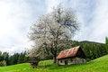 Free Seasonal House On The Hills, Slovenia Stock Photos - 26426383