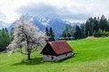 Free Highland Pasture Stock Photo - 26426680