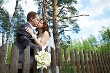 Free Kiss Bride And Groom About Wooden Fence Royalty Free Stock Images - 26421339