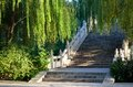 Free Willows And Steps Stock Photo - 26447050