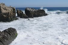 Free Surf, Sun Beach, Comorants Royalty Free Stock Image - 26440706