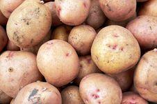 Free Potato Stock Photo - 26442090