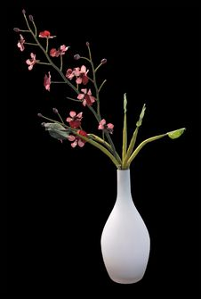 Free Red Orchid In A Vase Royalty Free Stock Image - 26450106