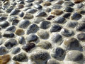 Free Wet Stones Texture Royalty Free Stock Image - 26462306