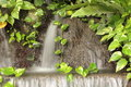 Free Waterfall In Garden Stock Photo - 26476100