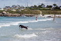 Free Labrador Dog Runs Through The Sea Water Stock Photography - 26481152