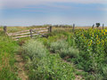 Free Old Wooden Gate In A Prairie Pasture Royalty Free Stock Photos - 26485358