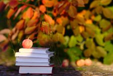 Free Red Apple On Books Royalty Free Stock Photography - 26484807