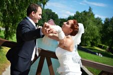 Free Happy Bride And Groom In Wedding Day Stock Photo - 26489300