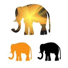 Free Golden Framed Elephant In Light  Rays Stock Photography - 26495222