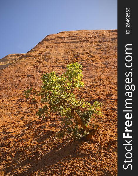 Ocher rocks &x28;French Colorado&x29;