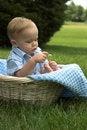 Free Basket Baby Stock Photos - 2656133