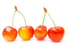 Free Cherries Stock Photos - 2650533