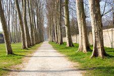 Free Garden Path Stock Image - 2652151