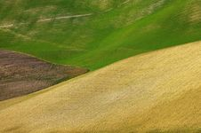 Free Landscape,Tuscany Val D Orcia Royalty Free Stock Images - 2654369