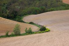 Free Landscape,Tuscany Val D Orcia Royalty Free Stock Photo - 2654415