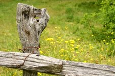 Old Fence Post Stock Image