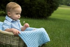 Free Basket Baby Stock Images - 2655964