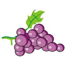 Free Purple Grapes Royalty Free Stock Image - 2657506