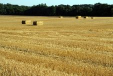 Free Bales Of Straw Stock Photography - 2657652