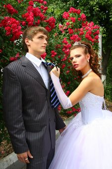 Free Bride And Groom Stock Photos - 2659703