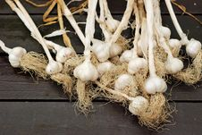 Free Dried Garlic Heads With Stems Ready For Braiding Stock Photo - 26508850