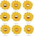 Free Funny Sunflower Emoticons Royalty Free Stock Photo - 26515095