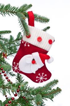 Free Christmas Sock With Santa Claus On On Fir Branch. Royalty Free Stock Images - 26510679