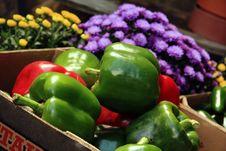 Free Mountain Fresh Peppers Stock Photo - 26519170