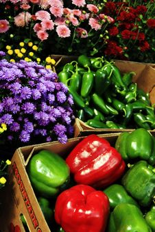 Tailgate Market Veggies Royalty Free Stock Images