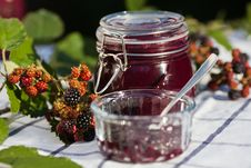 Free Self-made Blackberry Jam Royalty Free Stock Photography - 26528527