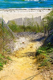 Free Path To The Beach Royalty Free Stock Photo - 26534365