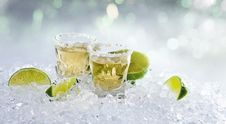 Free Tequila Stock Images - 26539384