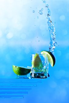 Free Tequila Stock Images - 26539394