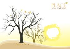 Free Abstract Trees And Sun Background Royalty Free Stock Images - 26542559