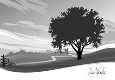 Free Abstract Tree B/W  Background - Stylized Stock Images - 26542724