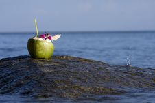 Free Beach And Coconut Royalty Free Stock Photo - 26544975