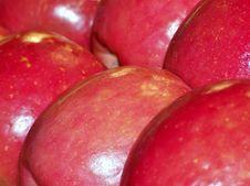 Free Apples Stock Photos - 26549963