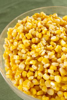 Body Of Corn Stock Images