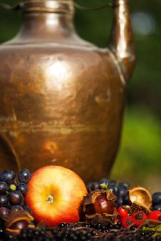 Free Autumnal Fruits In Front Of A Copper Pot Stock Photos - 26562893