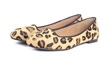 Free Animal Print Shoes Series 3 Stock Images - 26564274