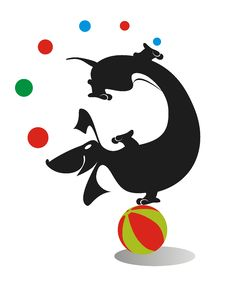 Free Dachshund Juggle Royalty Free Stock Photography - 26575387