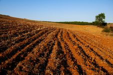 Free Red Dirt Royalty Free Stock Photos - 26575458
