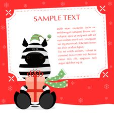Free Xmas Zebra Royalty Free Stock Photo - 26577415
