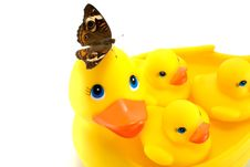 Free Rubber Ducks With Butterfly Royalty Free Stock Photo - 26582075